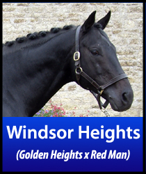 Windsor Heights